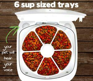 review of the Feed and Go Smart Pet Feeder