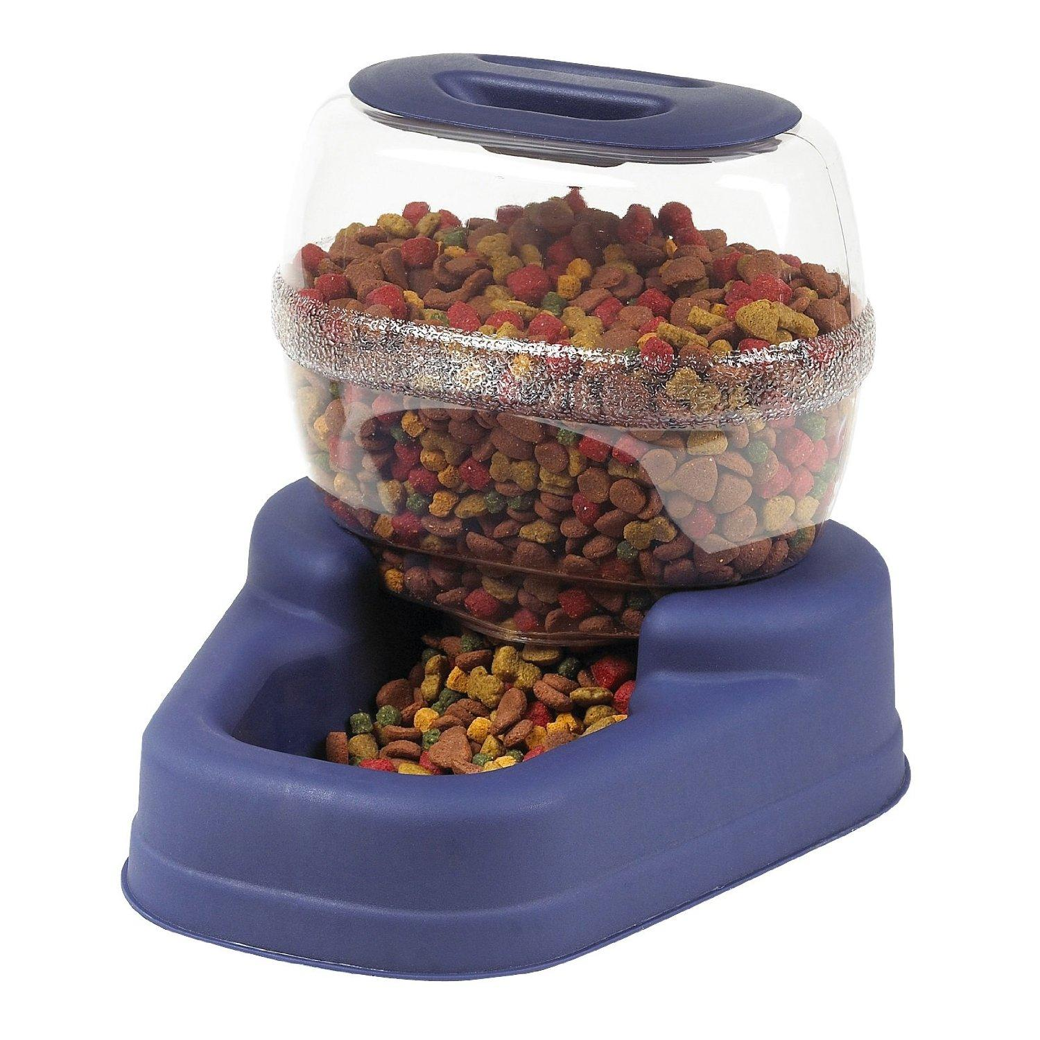 The Best Automatic Cat Food Dispenser Reviews 2017 Must Read