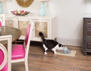 Drinkwell Sedona Pet Fountain lake breeze cat review