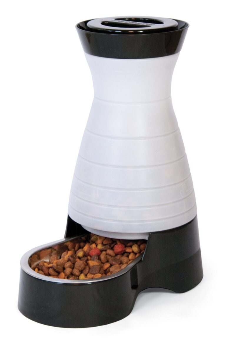 PetSafe Dog and Cat Food Station with Stainless Steel Bowl