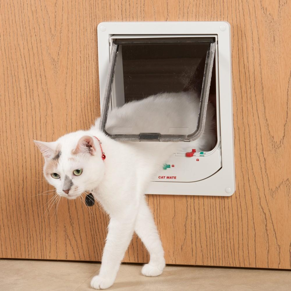 animates supplies petcorp in doors wood magnetic pet for w door use glass small cat