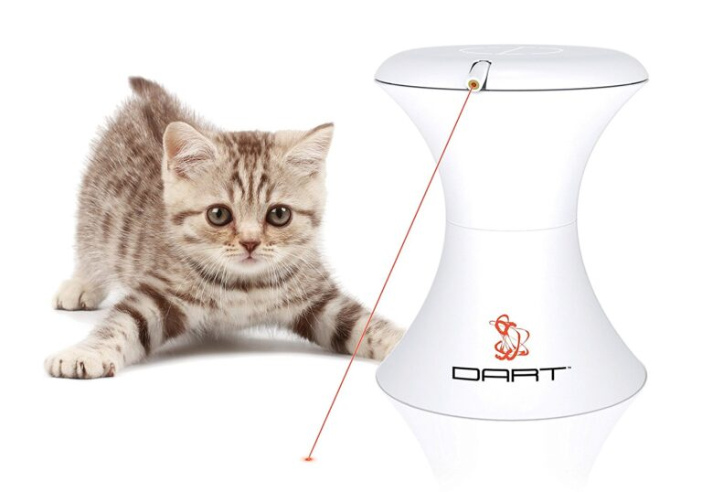 PetSafe Dart Automatic Rotating Laser Cat Toy review