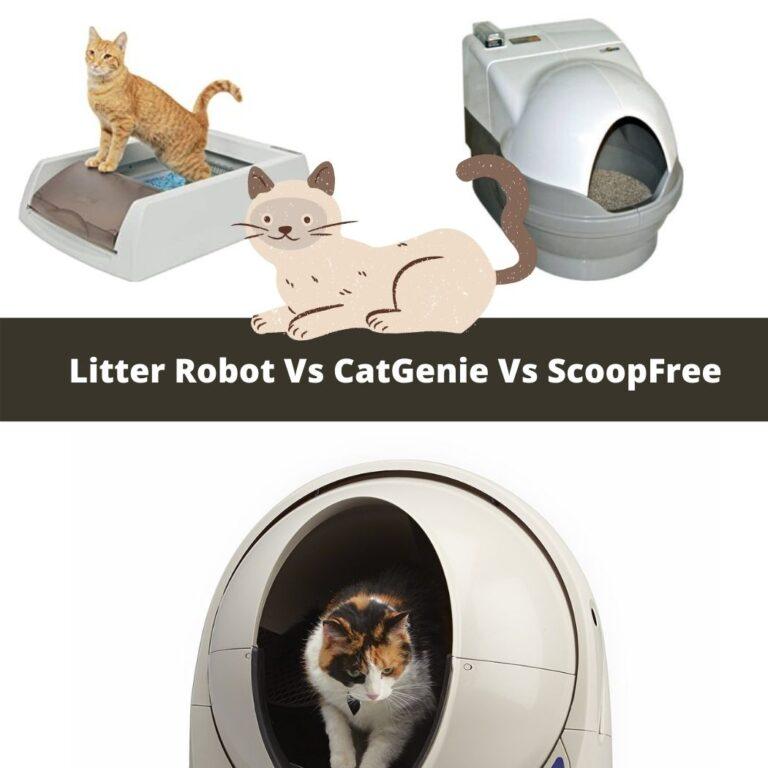 Litter Robot 3 Vs CatGenie VsScoopFree