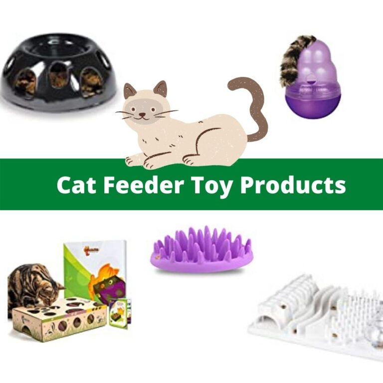 cat feeder toy review