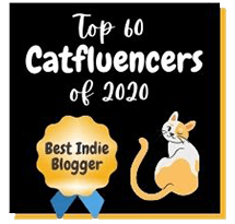 Top 60 Catfluencers blogger award
