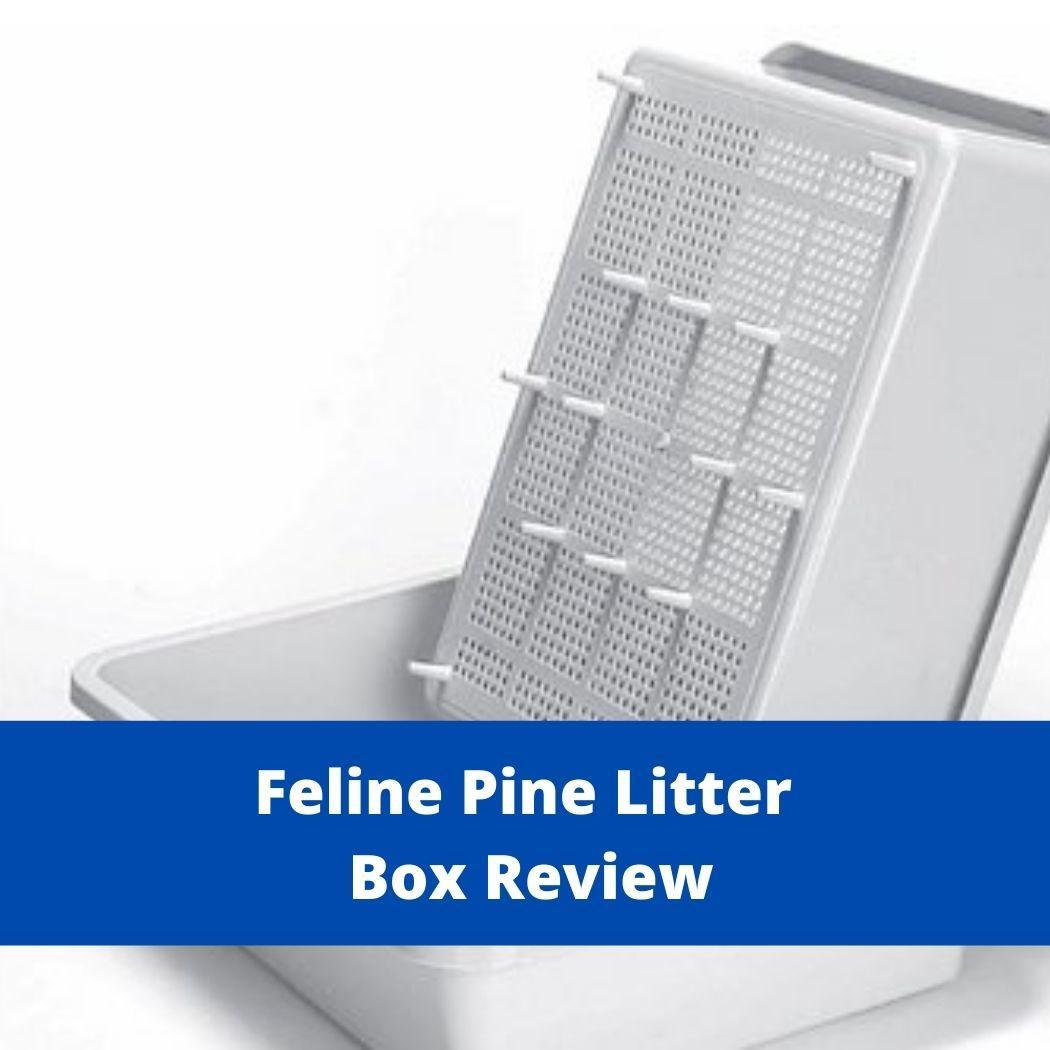 Feline Pine Litter Box Review