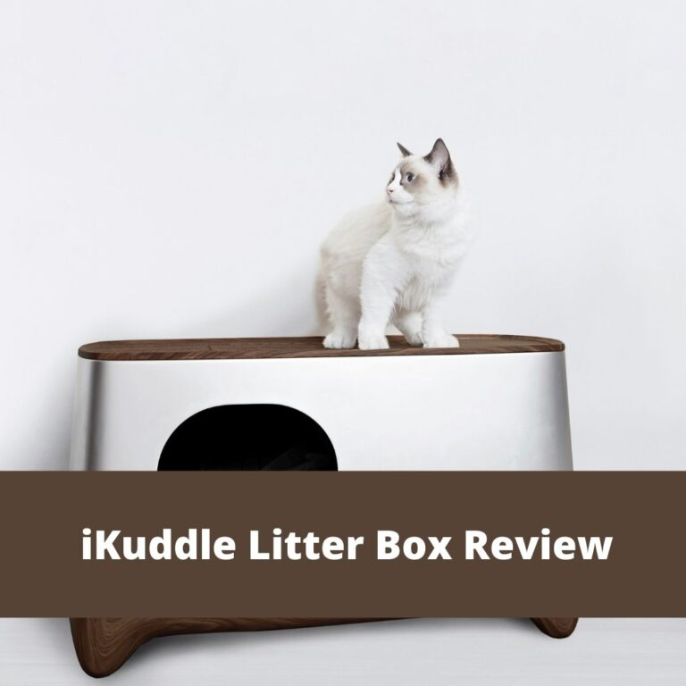 iKuddle Litter Box Review